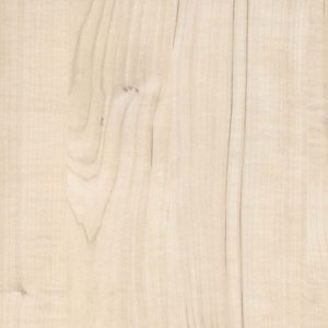 Visby Maple