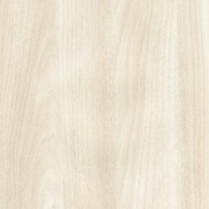 White Acacia